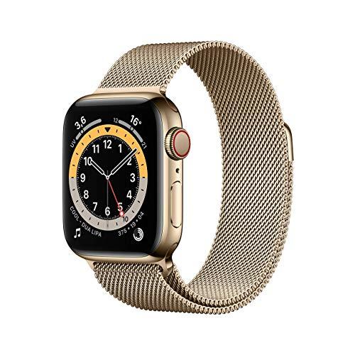 AppleWatch Series6 (GPS+Cellular, 40mm) Cassa in acciaio inossidabile color oro con Loop Cassa in maglia milanese color oro