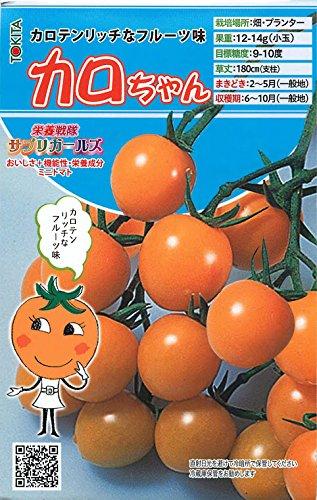 カロちゃん【ミニトマトの種】(8粒)