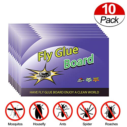 Fly Trap NonToxic Super Value Fly PaperEcoFriendly 100% Fly Traps for Indoor and Outdoor Use