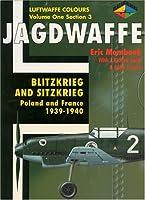Blitzkrieg and Sitzkrieg: Poland and France 1939-1940 (Jagdwaffe Series)