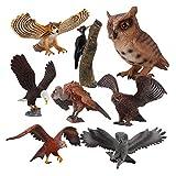 #N/A/a Figuras de Aves Pájaro Carpintero PVC de Acción Juguete para Niños Regalo de Cumpleaños 8PCS
