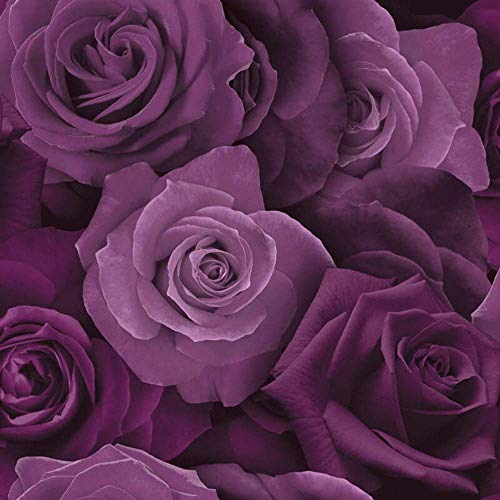 Arthouse Austin Rose Purple 675601 Wallpaper