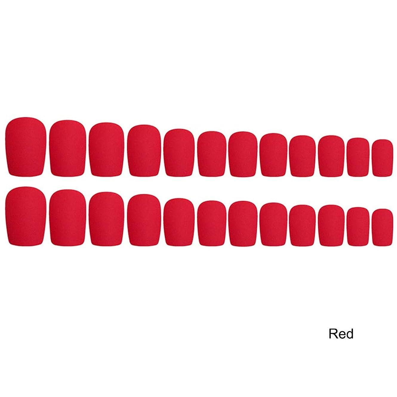 可能ひねり油Decdeal 24枚入れ ネイルチップ ネイル 練習用 ネイル用品 偽爪 つけ爪