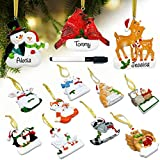 Personalized Christmas Ornaments Set of 12 Resin Figurines Hanging Family Christmas Tree Decorations 3D Animals Magnets Design for Home Box