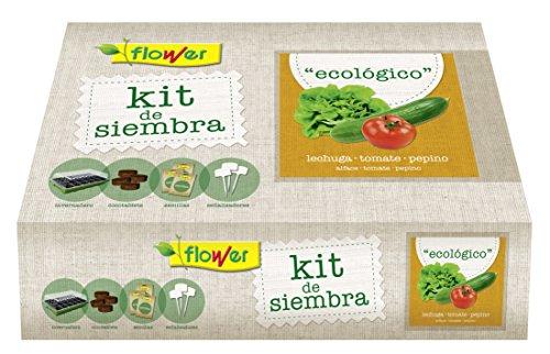 Flower 51178 51178-Kit semillas ecologico, No aplica, 38x24.