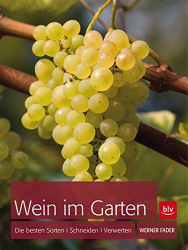 Wein im Garten: Die besten Sorten · Schneiden · Verwerten