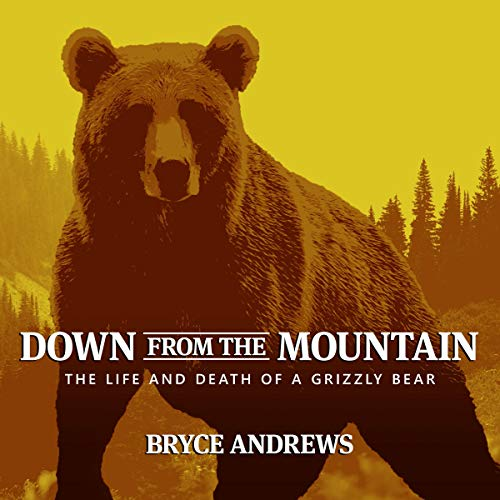Down from the Mountain audiobook cover art
