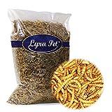 Lyra Pet® 1 kg Mehlwürmer 1000 g getrocknet Futter für Fische Nager Igel Reptilien