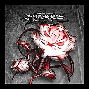 Jaelos Various Artists #2
