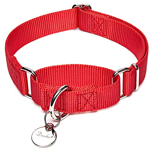 Dazzber Martingale Dog Collar No Pull, Enthusiastic Red, Medium, Neck 14 Inch -21 Inch, Adjustable Collars for Dogs