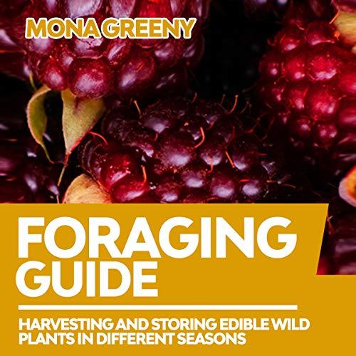 Foraging Guide Titelbild