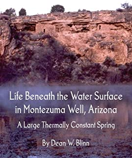Life Beneath the Water Surface in Montezuma Well, Arizona: A Large Thermally Constant Spring