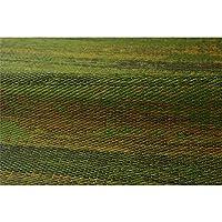 純国産 い草花ござカーペット 『カイン』 グリーン 江戸間3畳(約174×261cm)