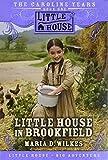 Little House in Brookfield (The Caroline Years, Bk 1)