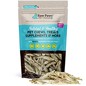 Raw Paws Pet Freeze Dried Minnows for Dogs & Cats – USA Fish Dog Treats – All Natural, Single Ingredient Minnow Cat Treats – Raw Freeze Dried Dog Snacks – Grain Free Cat Reward