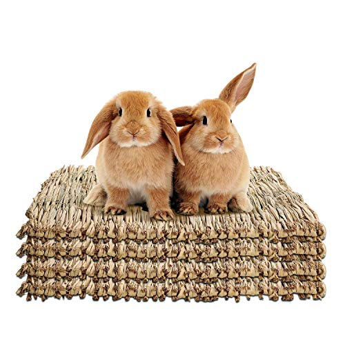 WUHOSTAM 4 Pack 11.81 x 15.75 Inches Grass Mat for Rabbits,Bunny Mat,Natural Straw Hay Woven Grass...