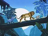 Swafing König der Löwen Panel Stoff mit Nachtmotiv,