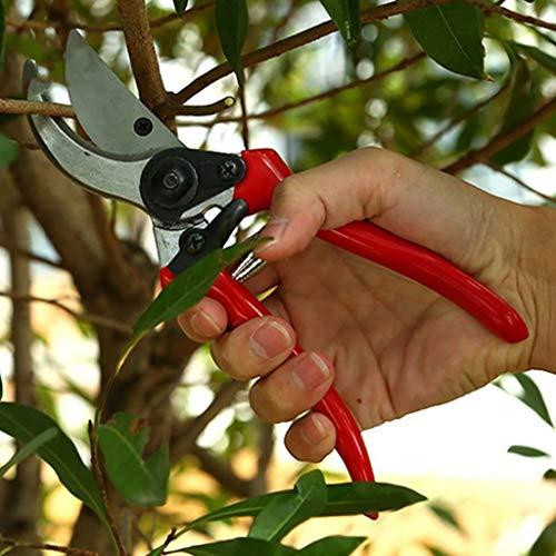 ZXX Branches GGarden sécateur Outils poignées de Jardin élagage des Arbres fruitiers coupés épais Ciseaux d'arbres fruitiers Jardinage Ciseaux élagage Outils de Jardinage en Pot (Color : A)