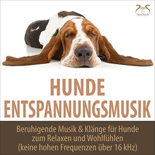 Träumen im Wald: Mein Hund und ich entspannen mit Naturgeräuschen, Grillen Zirpen und Frequenz-reduzierte Musik