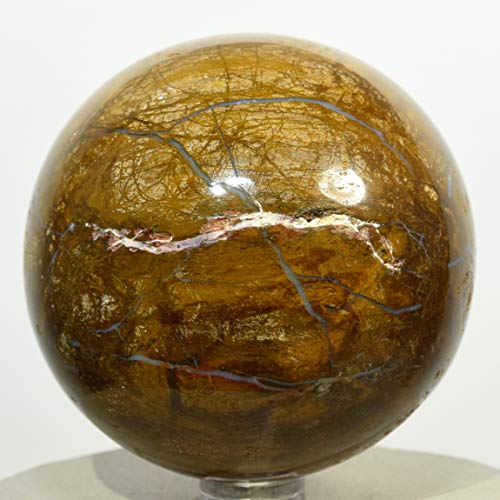 """2.6"""" Yellow Orange Petrified Wood Sphere Natural Agate Fossil Mineral Ball Polished Ancient Crystal Stone - India + Stand"""