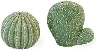 Boston International PRO19297 Porcelain Salt and Pepper Shaker Set, 2 Sizes, Prickly Cactus