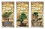 DIY Pegatinas Etiquetas para Pared Desmontables de Vinilo 3D Arte Mágico de Nisha, Conjunto de 3, Bonsai de piedras
