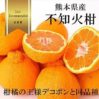【 熊本県産 】不知火柑 (デコポンと同品種) お試し 小玉 約2kg前後