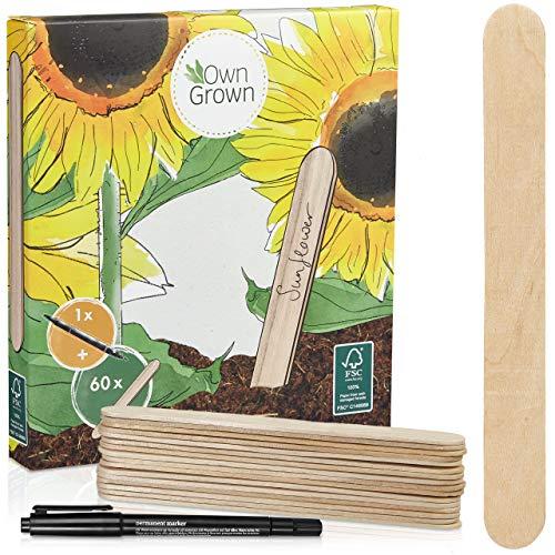 Holzschilder zum Beschriften: Premium Holz Pflanzenstecker im Set mit 60x Pflanzschilder und Stift – Schöne Pflanzenschilder zum Beschriften wetterfest – Holz Schilder zum Beschriften von OwnGrown