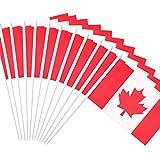 Anley Canadá Bandera con Asta, Canadiense 12x20 cm Mini Bandera Portátil con Asta Blanco Sólido de 30 cm - Color Vivo y Resistente a la Decoloración - 12 x 20 cm Bandera Portátil (1 Docena)