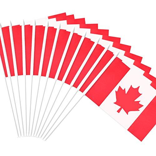 Anley Canada Stick Flag, Kanadische 12 x 20 cm (5 x 8 Zoll) handgeschweißte Mini-Flagge mit 30 cm (12 Zoll) weißem, massivem Pol - lebendige Farbe und lichtBeständig - 5 x 8 Zoll