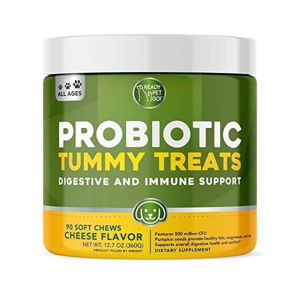 Probiotics for Dogs Enhanced with Digestive Enzymes + Prebiotics & Pumpkin |...