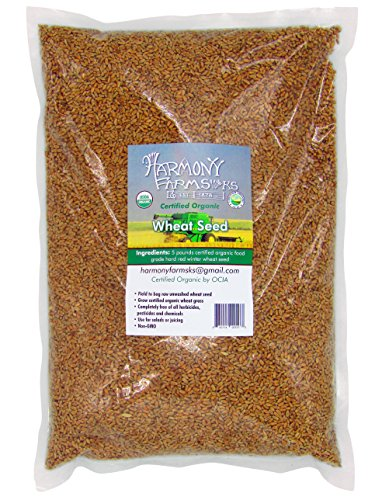 Certified Organic Hard Red Winter Wheat Seed Berries 5 pound bag Excellent for Bread Can be used for seed