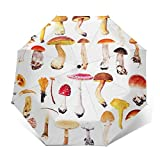Paraguas Plegable Automático Impermeable Sapos Grandes Setas Naranja, Paraguas De Viaje Compacto a Prueba De Viento, Folding Umbrella, Dosel Reforzado, Mango Ergonómico