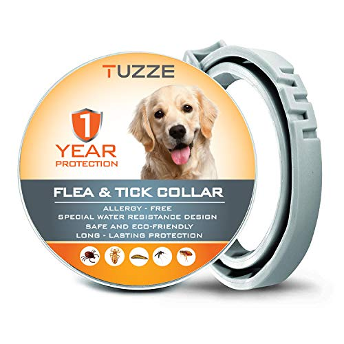 MASOLD Collar para Control de pulgas y garrapatas, 12 Meses