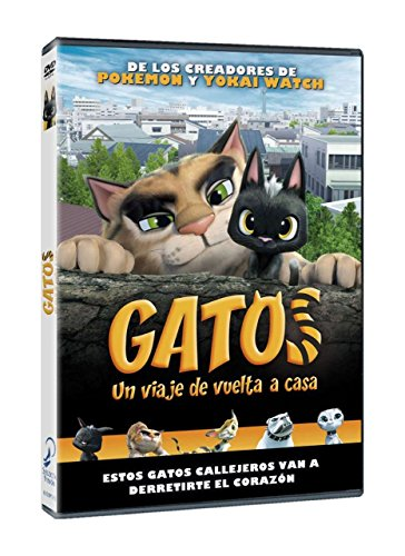 Gatos [DVD]