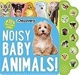 Noisy Baby Animals!