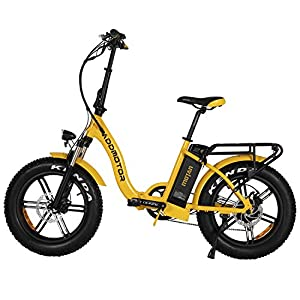 Addmotor Motan Electric Bike, 750W 20 Inch Folding Ebike for Adults M-140 R7 with Removable 48V16Ah Lithium Battery, Smart LCD Display, Rear Rack, Fenders