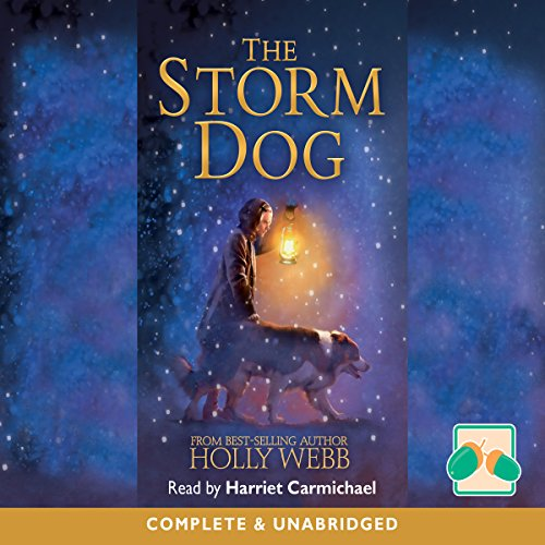 The Storm Dog audiobook cover art