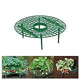 Kylewo Erdbeer Reifen, Kunststoff Wächst Unterstützung Abnehmbare Pflanze Unterstützung Plant Unterstützt den Schutz von Erdbeeren und hält die Erdbeerreinigung aufrecht (1PCS)
