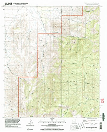 YellowMaps Skeleton Canyon NM topo map, 1:24000 Scale, 7.5 X 7.5 Minute, Historical, 1997, Updated 2003, 27 x 22 in - Tyvek