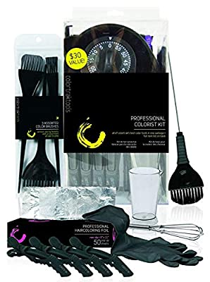 Colortrak Professional Hair Colorist Kit, 4-Pack Croc Clips, Color Beaker, Whisk, Duo Brush, 3-Pack of Brushes, Black Reusable Medium Gloves, Color Bowl, 50-Count Popup Hair Coloring Foil, Storage Box