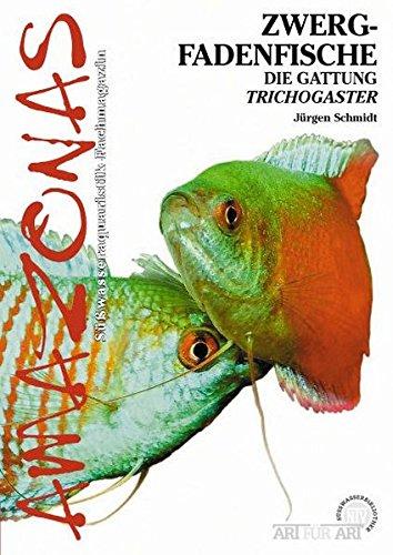 Zwergfadenfische: Die Gattung Trichogaster