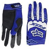 2014 Fox Racing Dirtpaw Race Gloves - Medium/Blue 並行輸入品