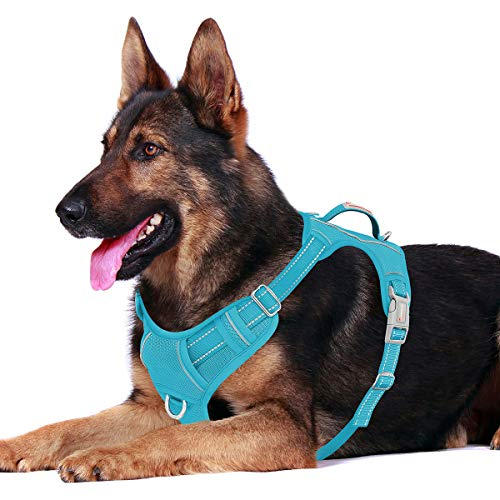 BARKBAY No Pull Dog Harness Front Clip Heavy Duty Reflective Easy Control Handle for Large Dog Walking with ID tag Pocket(Blue,XL)