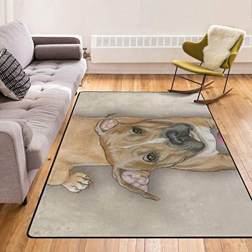 Peluche suave y esponjoso de 60 x 39 pulgadas para dormitorio, sala de estar, alfombra, guardería, sala de juegos para niños, aula, decoración de felpa, alfombra vintage de Pitbull para piso / azulejo