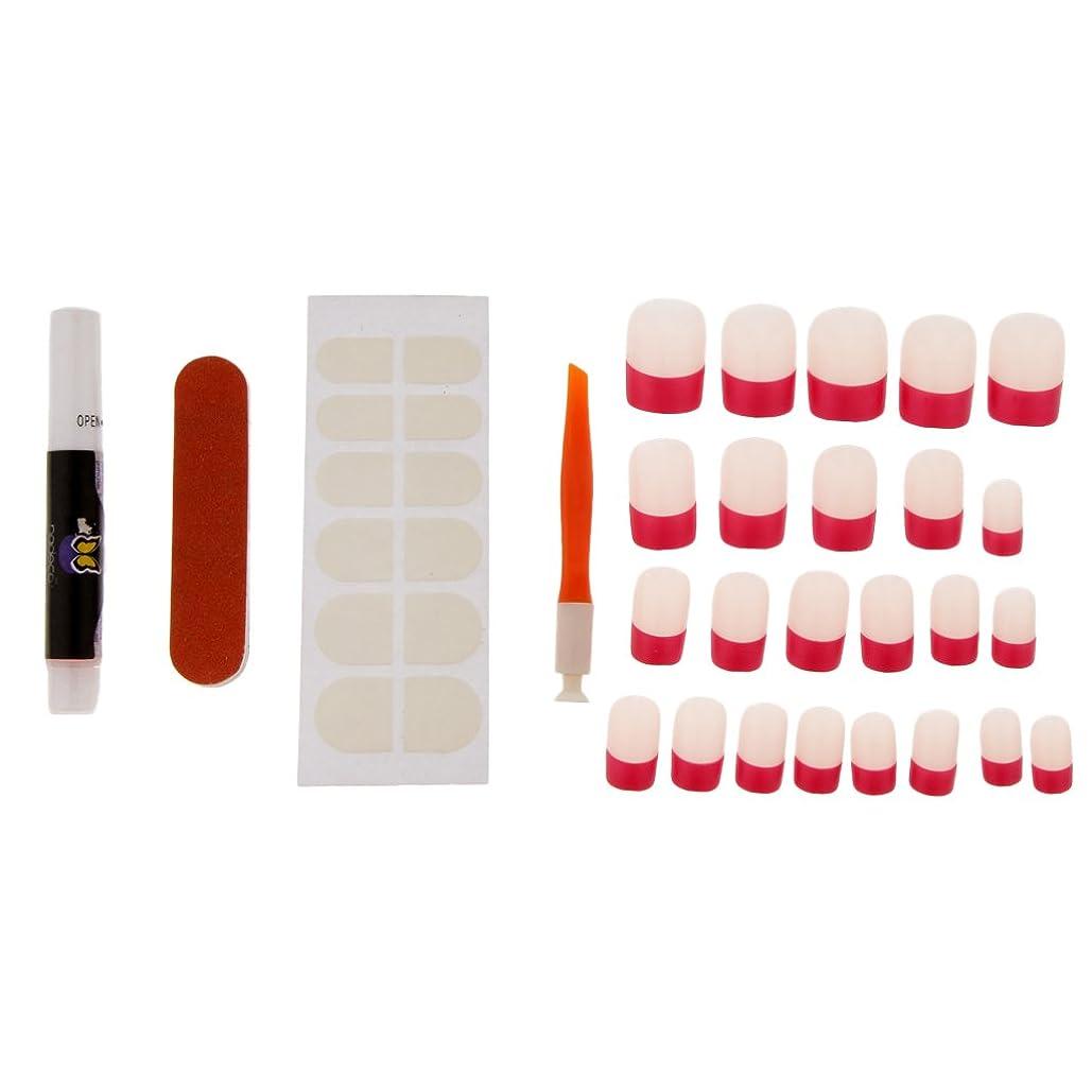 区別する交響曲食器棚Baosity 約24本 ネイルチップ マニキュア 接着剤 ネイルファイル ネイルセット