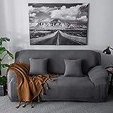 GOTOTOP - Funda de sofá de punto polar elástica y cómoda, funda de sillón para sofá de 1, 2, 3 o 4 plazas (gris oscuro, 3 plazas: 190 ~ 230 cm)