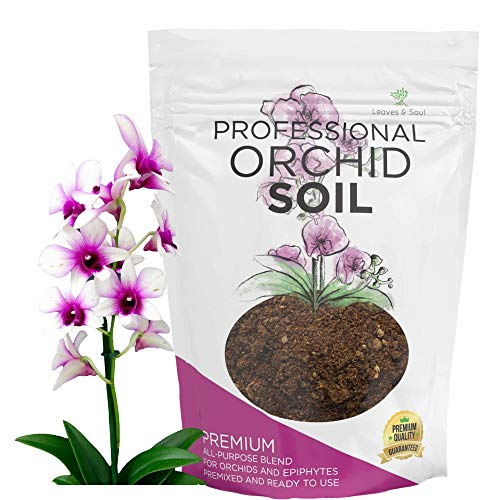 Orchid Soil Premium All Purpose Blend   Ready to Use for Orchids, Bromeliads, Epiphytic Plants   Lava, Calcined Clay and Pinebark   Extra Large 2.2 Quarts   Made in USA