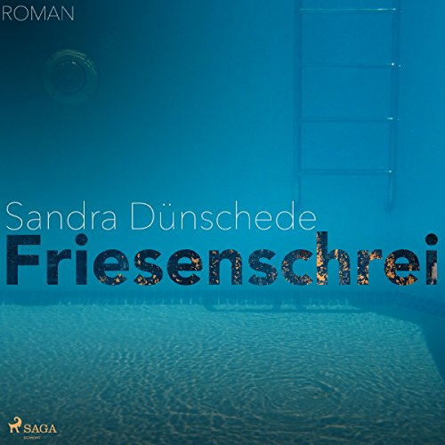 Friesenschrei audiobook cover art