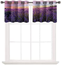 oobon 3D Printed Window Cafe Bedroom Bathroom Valance,Lavender,Nature European Land,for Kitchen Living Decor with Grommet Tier,W42 by L12,2 Panels
